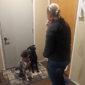 mini-trainer basic dog-training class